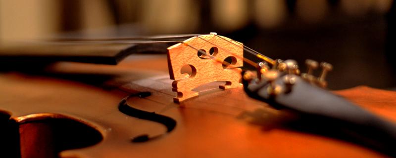 violin_cilclo